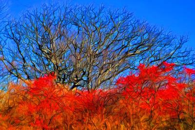 Plein Air Digital Art - Framed In Red by Lilia D