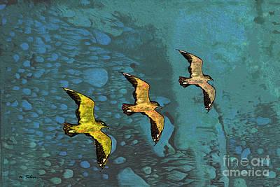 Flying Seagull Mixed Media - Freedom Flight by Nina Silver