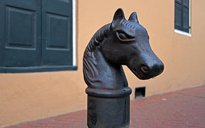 Animals Photograph - French Quarter Horse Head Hitching Post by Juergen Roth