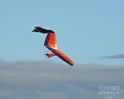 Sky Photograph - Frequent Flyers by Scott Cameron