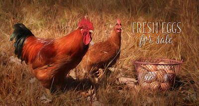 Chicken Mixed Media - Fresh Eggs For Sale by Lori Deiter