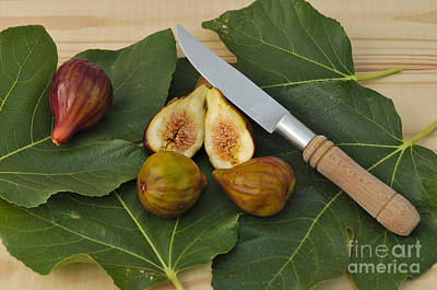 Figs Photograph - Fresh Figs by Angelo DeVal