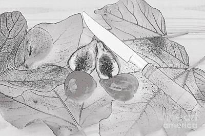 Figs Photograph - Fresh Figs. Digital Art by Angelo DeVal