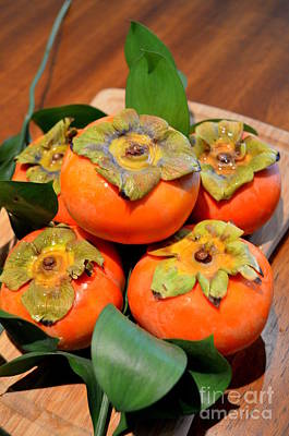 Fresh Fuyu Persimmons Print by Mary Deal
