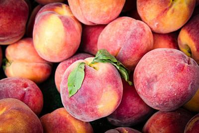 Fresh Peaches Print by Dina Calvarese
