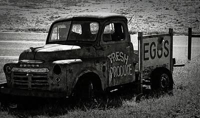 Fresh Produce Free Range Eggs Print by Teresa Mucha