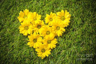 Daisy Photograph - Fresh Spring Flowers In Heart Shape On Grass by Michal Bednarek