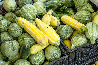 Fresh Squash At The Market Print by Teri Virbickis