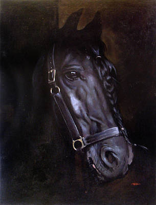 Purebred Painting - Friesian by Christopher Reid