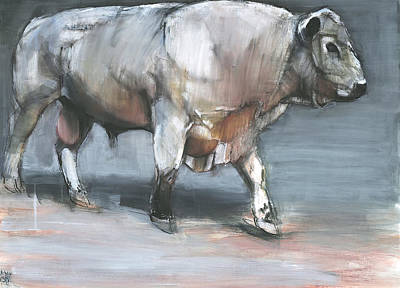 Bull Mixed Media - Fresno   Galloway Bull by Mark Adlington