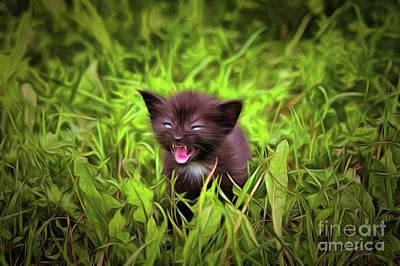 Puppies Digital Art - Fretting Kitten In The Grass by Michal Boubin