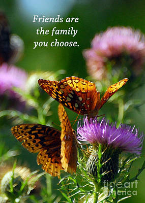 Butterfly Photograph - Friends Are Family by Kerri Farley