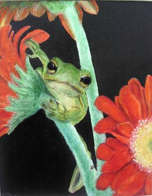 Colored Pencil Painting - Frog by AJ Devlin