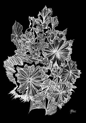 Abstract Shapes Drawing - Frosted Spring by Charles Cater