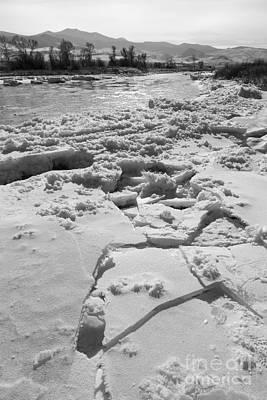 Black Photograph - Frozen by Carolyn Brown