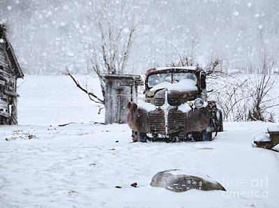 Flurries Photograph - Frozen In Time by Benanne Stiens