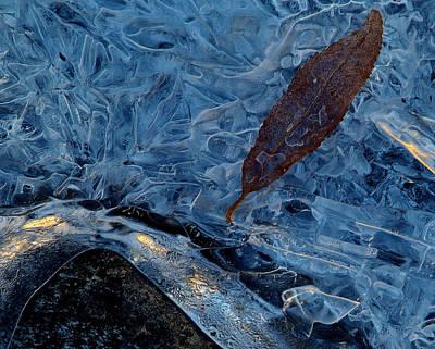 Frozen Refuge.. Print by Al  Swasey