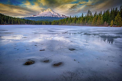Salmon Photograph - Frozen Trillium by Rick Berk