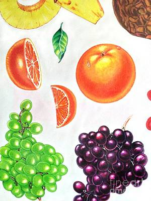 Fruit Illustrations - Markers And Pencil Print by Miriam Danar