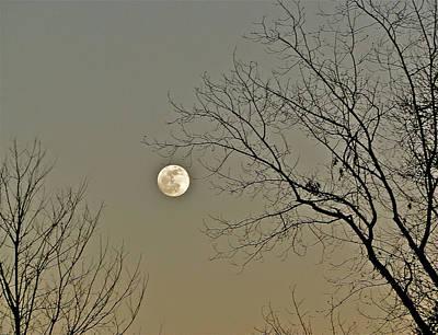 Full Moon In January Print by Liz Vernand