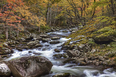 Smokey Mountains Photograph - Fun With The Colors by Jon Glaser