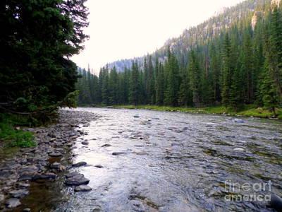 Gallatin River Photograph - Gallatin River Montana by Kay Novy