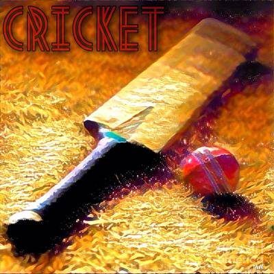 Cricket Mixed Media - Game On by Maria Watt