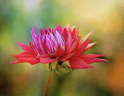 Blooming Digital Art - Garden Beauty by Maria Angelica Maira