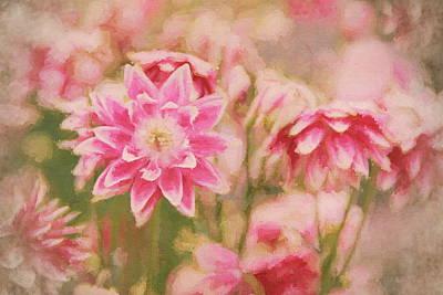 Photograph - Garden Delights by Andrea Kollo