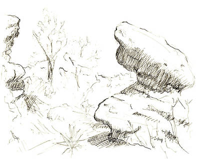 Garden Of The Gods Rocks Along The Trail Ink Drawing By Adam Lon Print by Adam Long