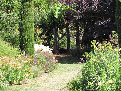 Nature Photograph - Garden Path by Julia Stubbe