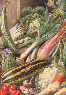 Cauliflower Painting - Garden Vegetables by Louis Fairfax Muckley