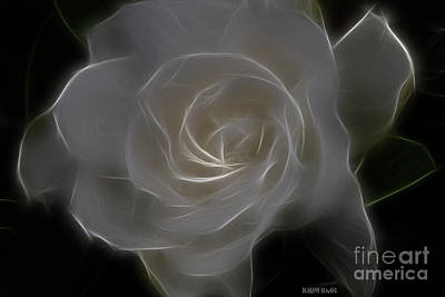 Gardenia Blossom Print by Deborah Benoit