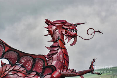 Photograph - Gareth The Dragon 3 by Steve Purnell