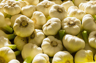 Garlic At The Market Print by John Trax