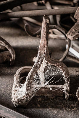 Relic Glass Photograph - Gathering Dust by Teresa Wilson