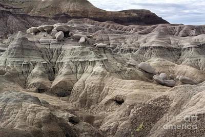 Petrified Forest Arizona Photograph - Geology Lesson 2 by Melany Sarafis