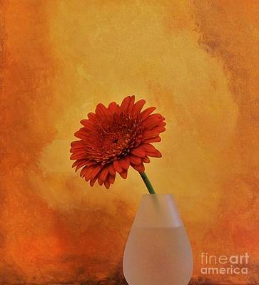 Mums Mixed Media - Gerber Girl by Marsha Heiken