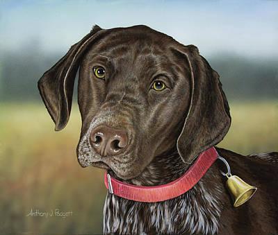 Chocolate Labrador Retriever Painting - German Chocolate by Anthony J Padgett
