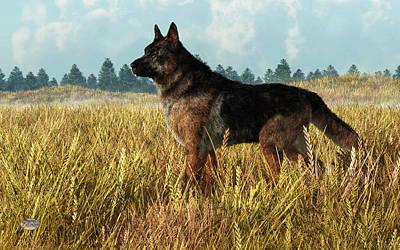 Herding Dog Digital Art - German Shepherd by Daniel Eskridge