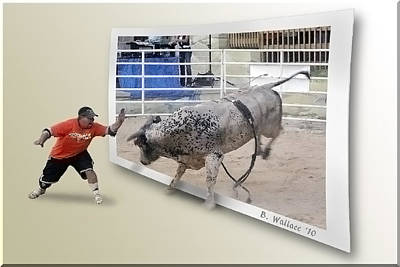 Of Rodeo Bucking Bulls Photograph - Get Back by Brian Wallace