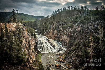 Gibbon Waterfall Print by Robert Bales