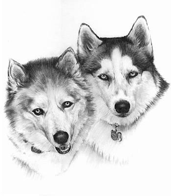 Companion Drawing - Ginger And Nani by Rachel Christine Nowicki