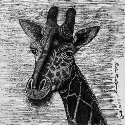 Drawing - Giraffe  by Richie Montgomery