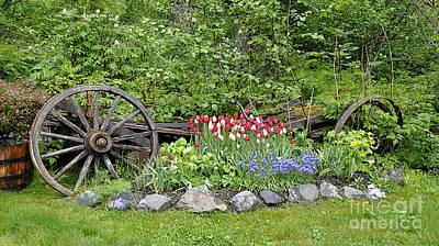 Rusted Barrels Photograph - Girdwood Garden Alaska by Diane E Berry