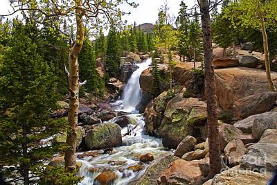Photograph - Glacier Creek And Alberta Falls by Rich Walter