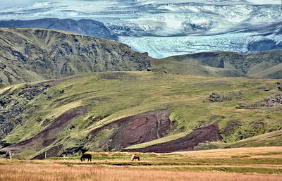 Glacier Mountains Meadows Horses Print by David Halperin