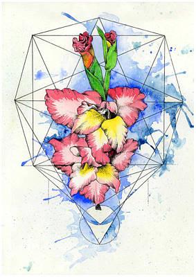 Gladiolus Drawing - Gladioli by Diana Paterson