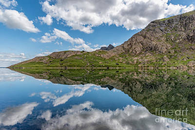 Pig Digital Art - Glaslyn Lake by Adrian Evans