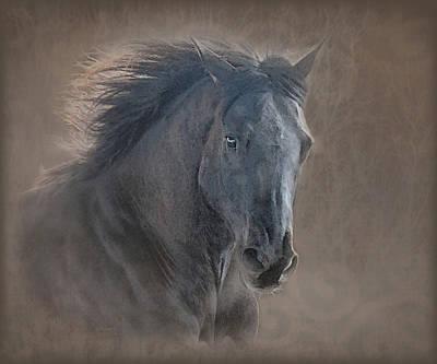 Horse Digital Art - Glory Galloping Black Horse by Renee Forth-Fukumoto